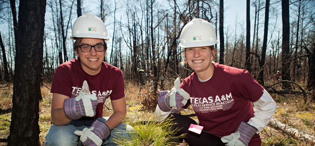 aggie-replant
